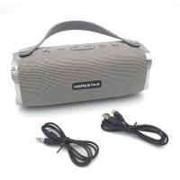 Колонка Bluetooth HOPESTAR H24 Gray